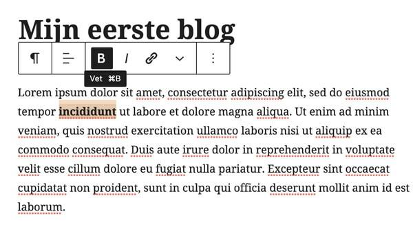 blog schrijven wordpress