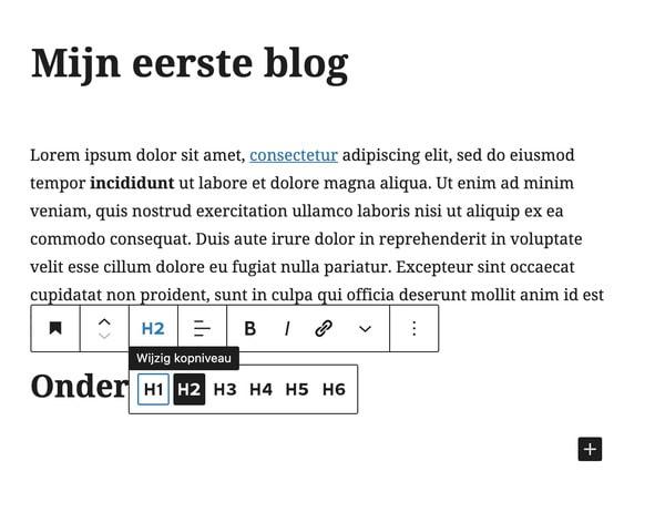 Blog tussenkop